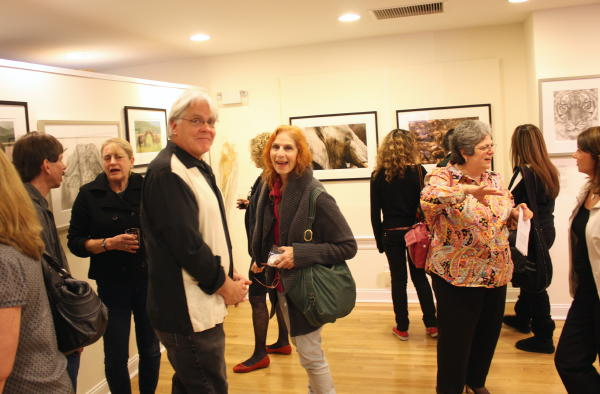 New Canaan Art Exhibition, Patty Storms, Photo Album